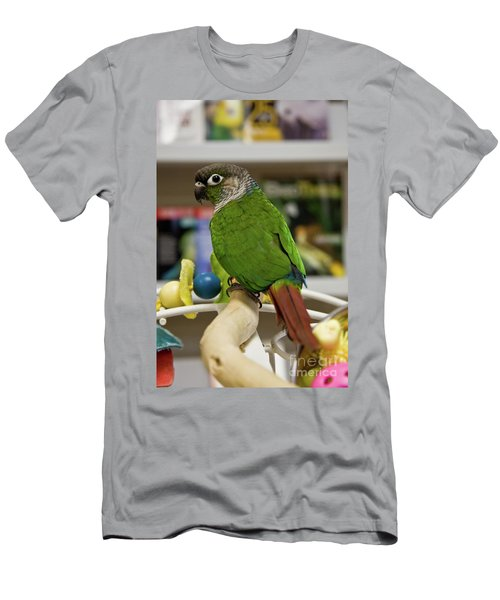 Green Cheek Conure Men's T-Shirt (Athletic Fit)