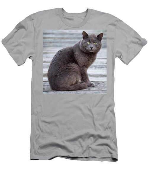 Men's T-Shirt (Slim Fit) featuring the photograph Green Eye Stare Cat Square by Terry DeLuco