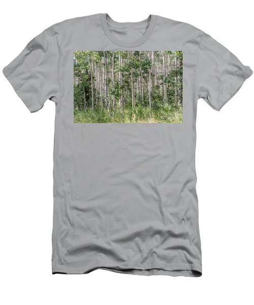 Grove Of Quaking Aspen Aka Quakies Men's T-Shirt (Athletic Fit)