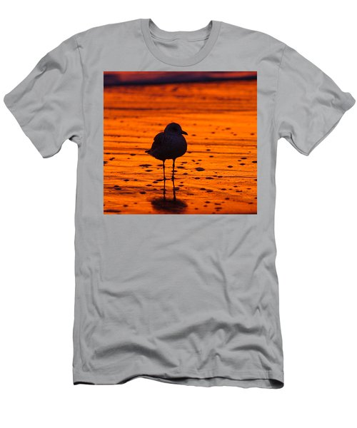 Gull Caught At Sunrise Men's T-Shirt (Athletic Fit)