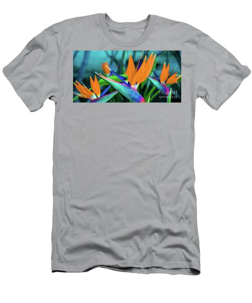 Hawaii Bird Of Paradise Flowers Men's T-Shirt (Athletic Fit)
