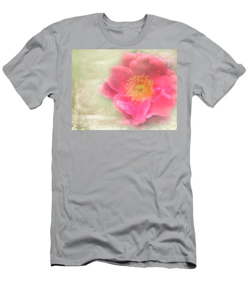 Heirloom Rose Men's T-Shirt (Slim Fit) by Catherine Alfidi