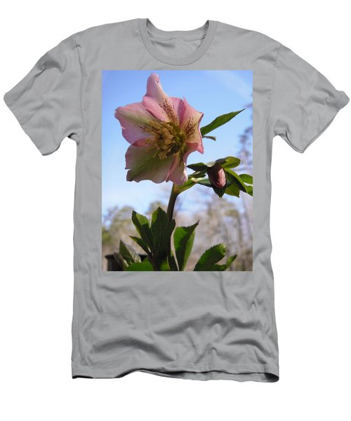 Hellebore Morning Men's T-Shirt (Athletic Fit)