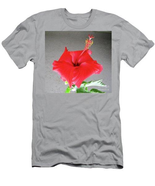 Hibiscus #1 Men's T-Shirt (Athletic Fit)