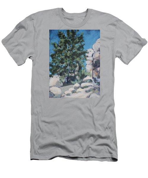 Hidden Valley Men's T-Shirt (Slim Fit) by Richard Willson