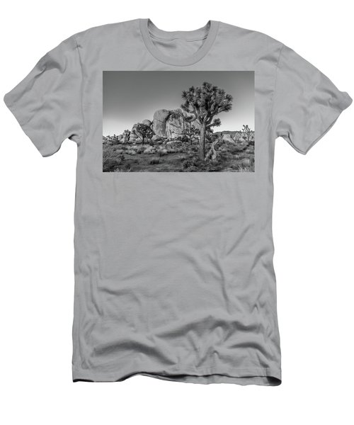 Hidden Valley Rock Men's T-Shirt (Athletic Fit)