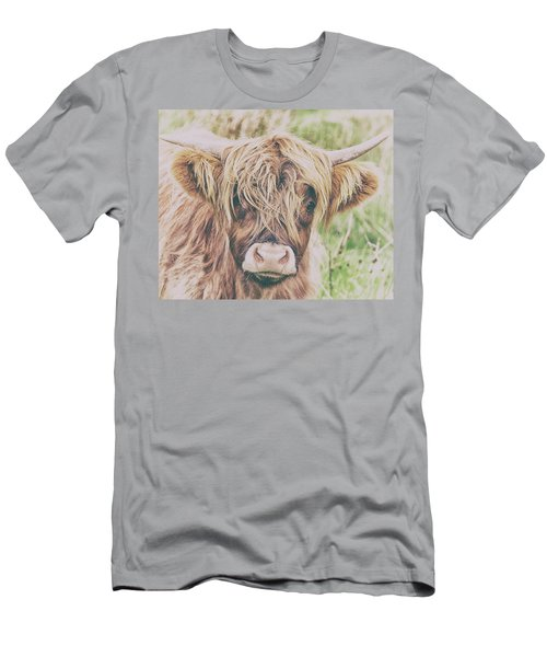 Highland Cattle Men's T-Shirt (Athletic Fit)
