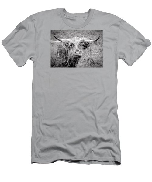 Highland Cow Men's T-Shirt (Slim Fit) by Jeremy Lavender Photography