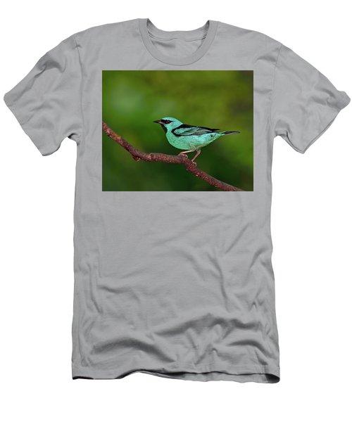 Highlight Men's T-Shirt (Slim Fit) by Tony Beck