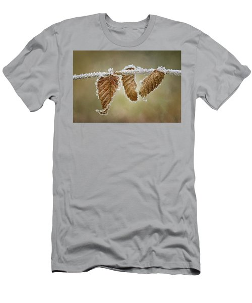 Hoar Frost - Leaves Men's T-Shirt (Slim Fit) by Nikolyn McDonald