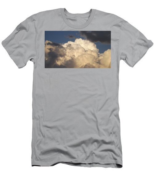 Home Of The Gods Men's T-Shirt (Slim Fit) by Don Koester