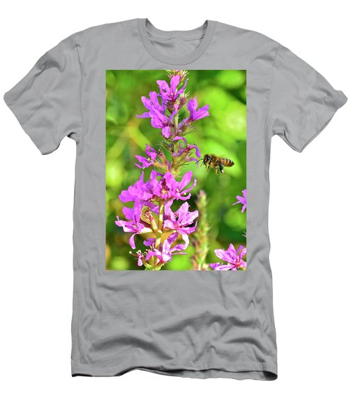 Honey Bee In Flight Men's T-Shirt (Athletic Fit)