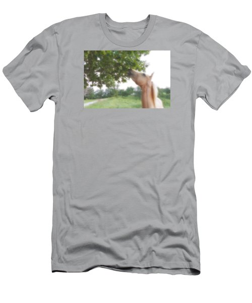 Horse Grazes In A Tree Men's T-Shirt (Slim Fit) by Jana Russon