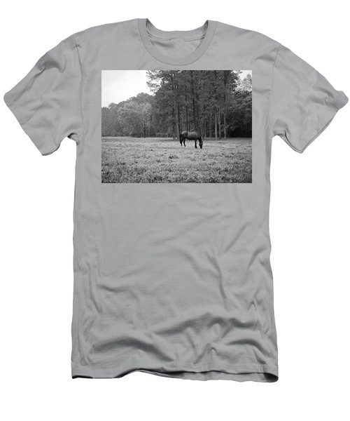 Horse In Pasture Men's T-Shirt (Athletic Fit)