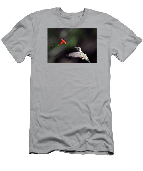 Hummingbird And Cardinal Climber Men's T-Shirt (Slim Fit) by Kathy Eickenberg