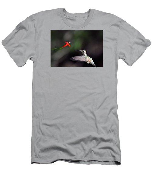 Hummingbird And Cardinal Climber Men's T-Shirt (Athletic Fit)
