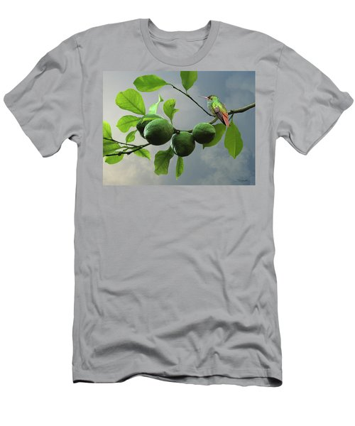 Hummingbird In Lime Tree Men's T-Shirt (Athletic Fit)