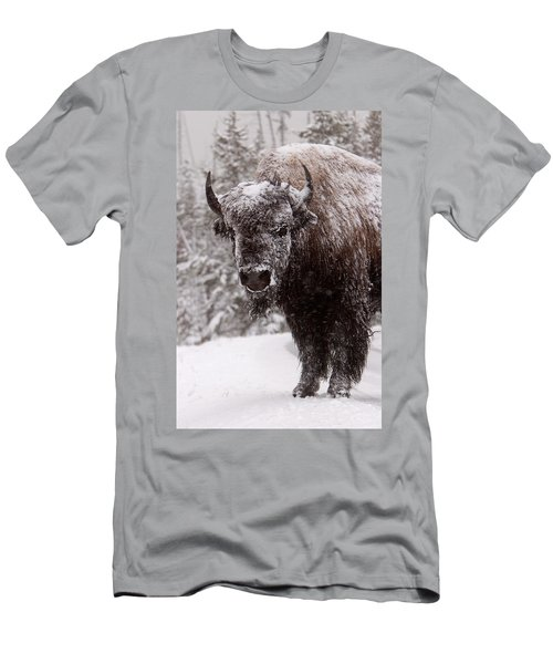 Ice Cold Winter Buffalo Men's T-Shirt (Athletic Fit)