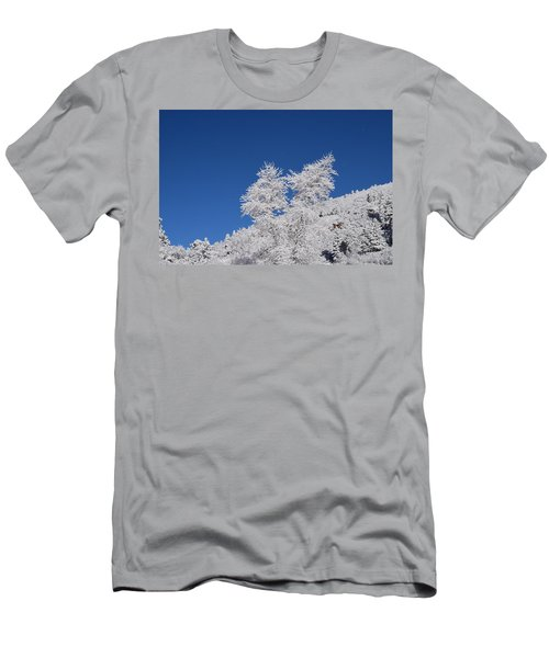 Ice Crystals Ute Pass Cos Co Men's T-Shirt (Athletic Fit)