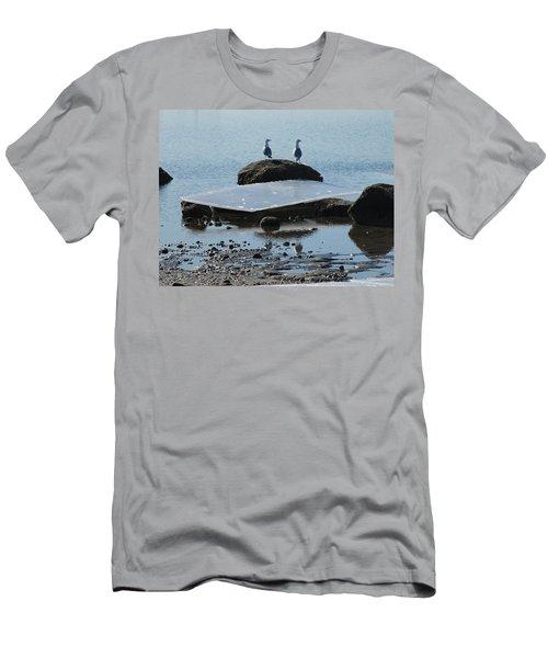 Ice Monolith Men's T-Shirt (Athletic Fit)