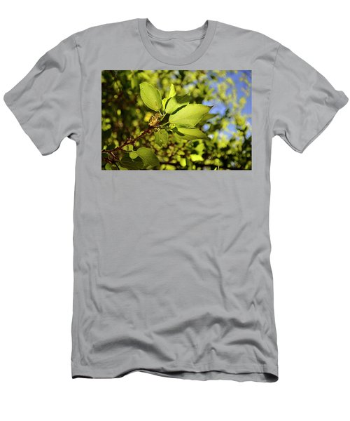 Illuminated Leaves Men's T-Shirt (Athletic Fit)