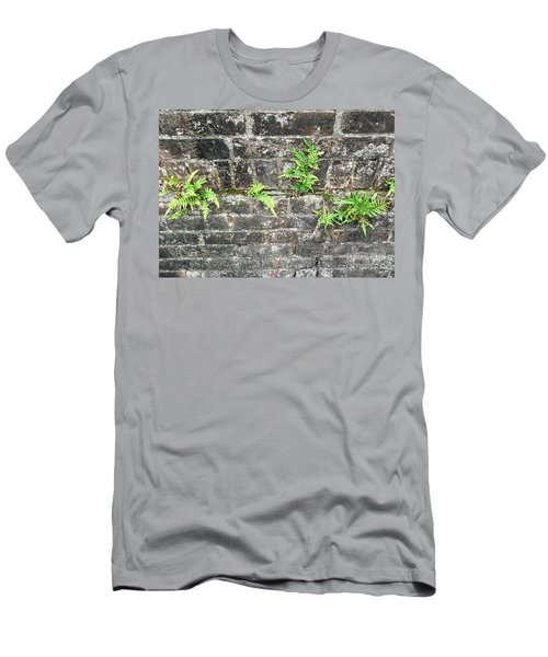 Men's T-Shirt (Slim Fit) featuring the photograph Intrepid Ferns by Kim Nelson