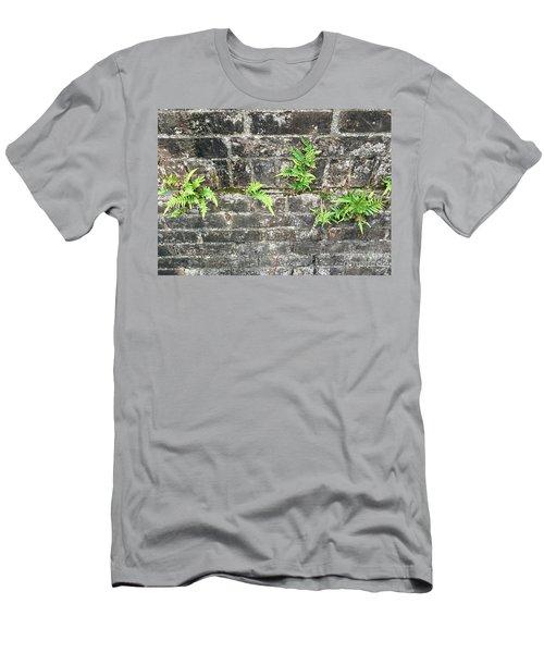 Intrepid Ferns Men's T-Shirt (Athletic Fit)