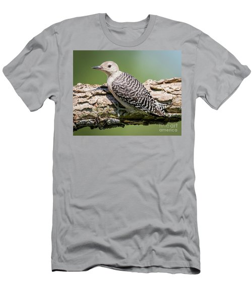 Juvenile Red-bellied Woodpecker Men's T-Shirt (Slim Fit) by Ricky L Jones