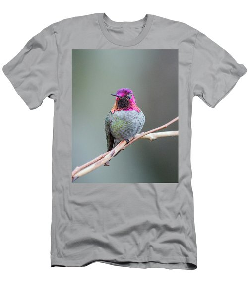 Karisa's Hummingbird.1 Men's T-Shirt (Athletic Fit)
