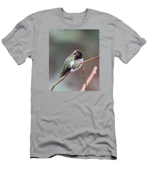 Karisa's Hummingbird.2 Men's T-Shirt (Slim Fit) by E Faithe Lester