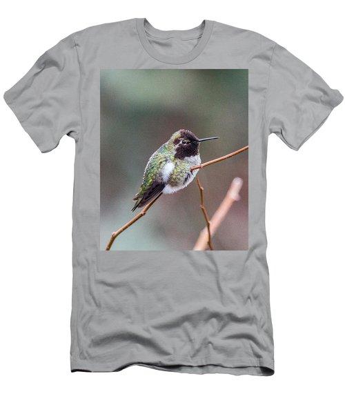Karisa's Hummingbird.2 Men's T-Shirt (Athletic Fit)