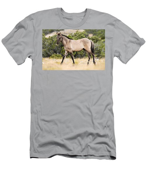 Kiger Colt Men's T-Shirt (Athletic Fit)