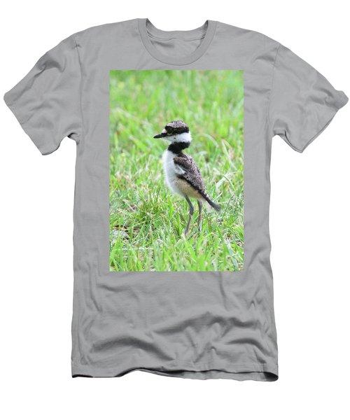 Killdeer Chick 3825 Men's T-Shirt (Athletic Fit)