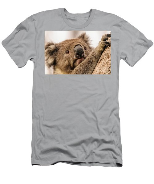 Koala 3 Men's T-Shirt (Slim Fit) by Werner Padarin