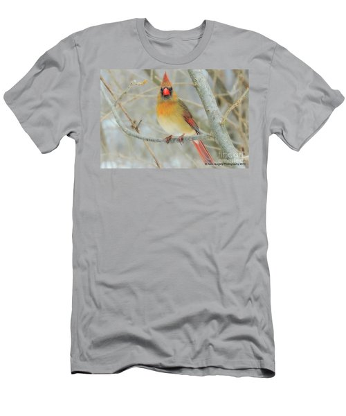 Lady In Waiting Men's T-Shirt (Athletic Fit)