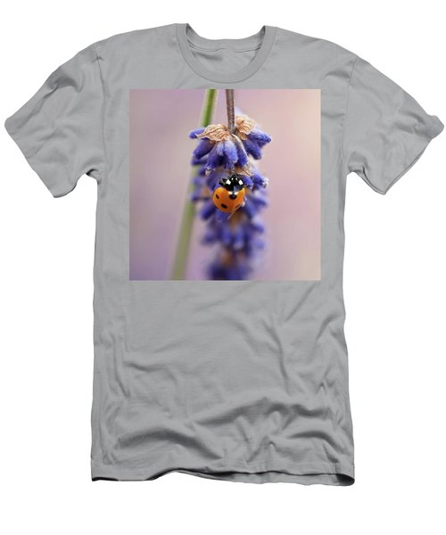 Ladybird On Norfolk Lavender  #norfolk Men's T-Shirt (Slim Fit)