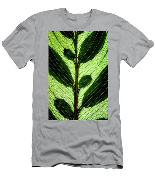 Leaf Detail Men's T-Shirt (Athletic Fit)