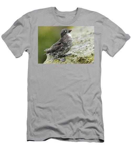 Least Auklet Men's T-Shirt (Athletic Fit)