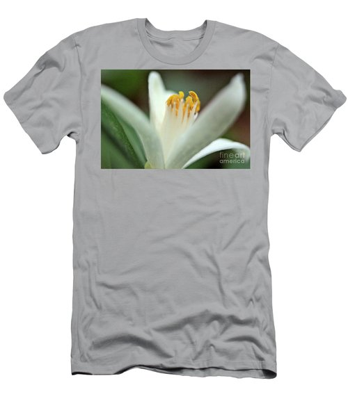Lemon Flower 2018 Men's T-Shirt (Athletic Fit)