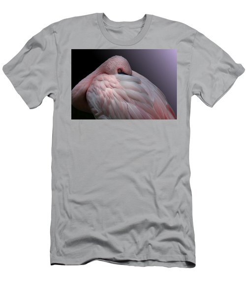 Lesser Flamingo Resting Men's T-Shirt (Athletic Fit)