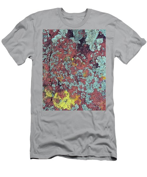 Lichen Colors Men's T-Shirt (Slim Fit) by Todd Breitling