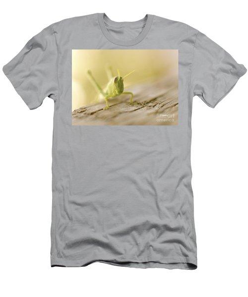 Little Grasshopper Men's T-Shirt (Athletic Fit)