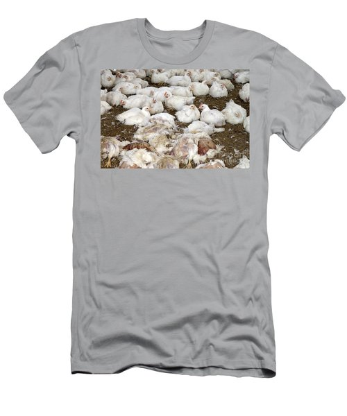 Live And Dead Chickens Men's T-Shirt (Athletic Fit)