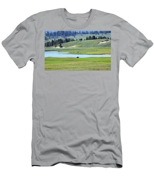 Lone Bison Out On The Prairie Men's T-Shirt (Athletic Fit)