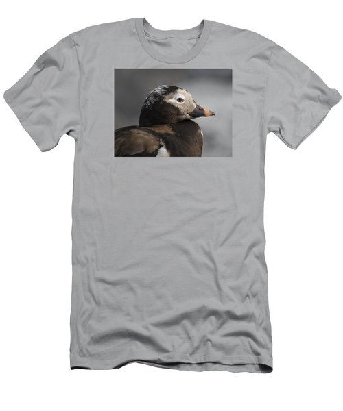 Long-tailed Stare Men's T-Shirt (Athletic Fit)