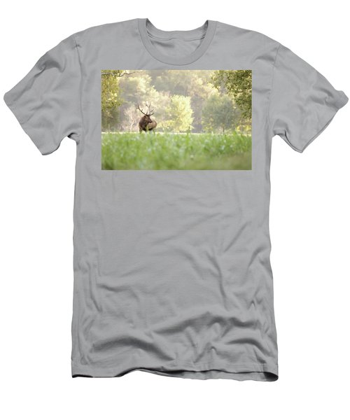 Looking For Love Men's T-Shirt (Athletic Fit)