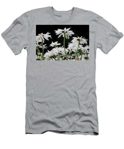 Looking Up At At Daisies Men's T-Shirt (Athletic Fit)