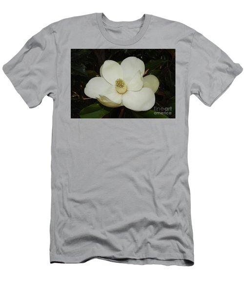 Magnolia Blossom 5 Men's T-Shirt (Athletic Fit)