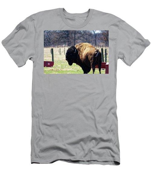 Male Bison Men's T-Shirt (Athletic Fit)