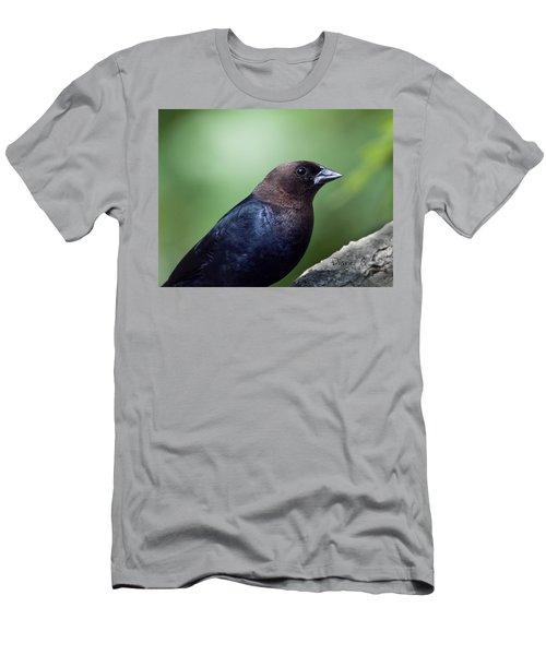 Male Cowbird Men's T-Shirt (Athletic Fit)